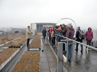 The main Marie Curie research roof on the Hicks building.