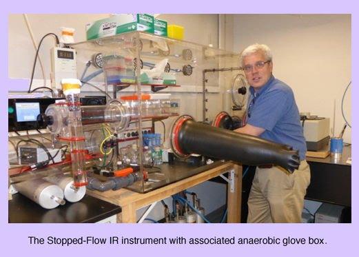 Stopped-Flow Infrared Spectroscopy (SF-IR)