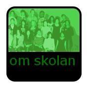 https://sites.google.com/a/skola.lund.se/delfinskolan-om-skolan/home