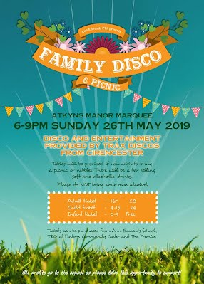 family disco and picnic poster larger more details