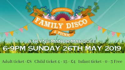 family disco and picnic poster smaller