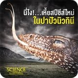 https://sites.google.com/a/srk.ac.th/sci/varanus-salvator
