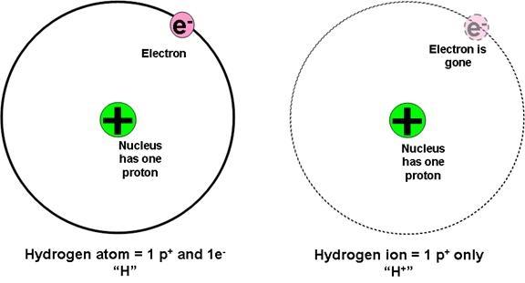 b  subatomic particles