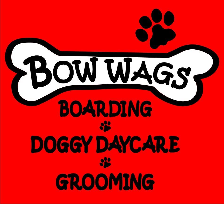 Bow Wags