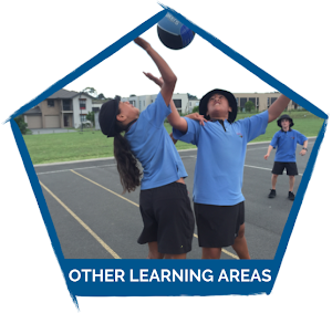 https://sites.google.com/a/stonefields.school.nz/lh52016/other-learning-areas