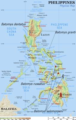 Spanish Philippines Map.Philippines Imperialism Project Spain C Block