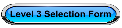 Year 12/13 Selection Form