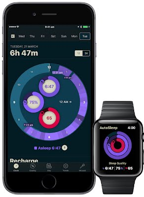 iPhone and Watch Sleep Rings.