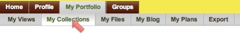 My collections tab in the My portfolio navigation bar