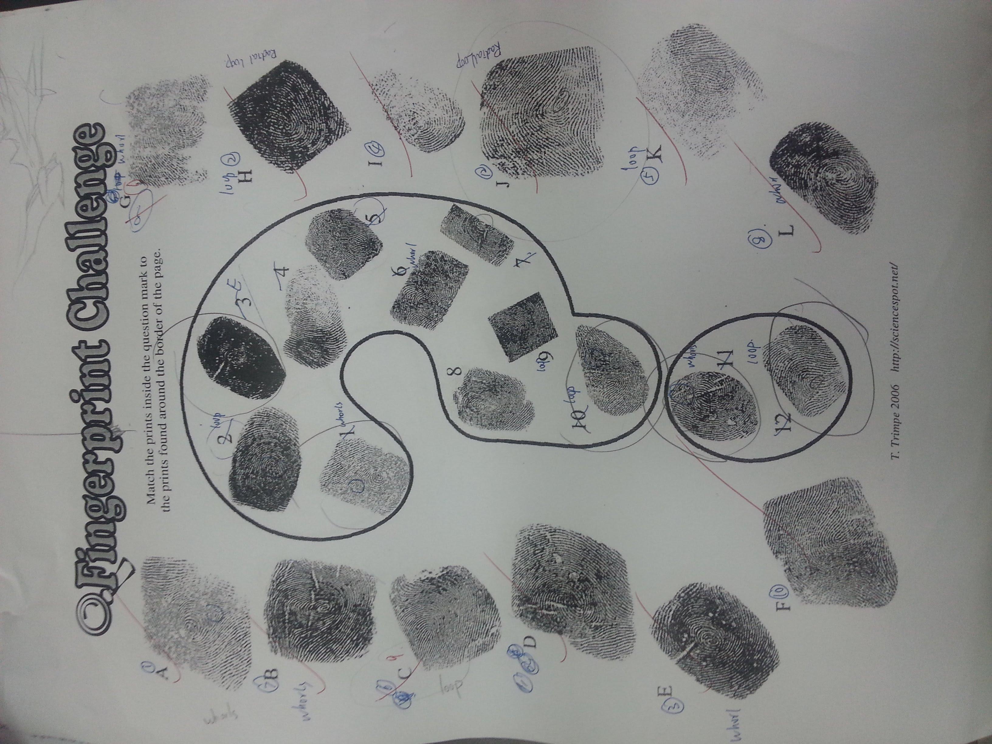 Bestseller: Answer Key Fingerprint Challenge Answers