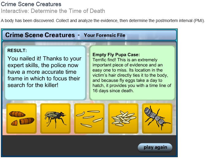 IDE 145 Introduction to Forensic Science TJC IP – Forensic Entomology Worksheet