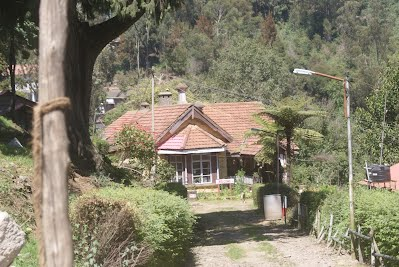 Kodaikanal- The Lake, Boat Club, Boats