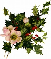 Holly and floral arrangement.