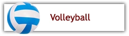 http://il.8to18.com/triadhs/activities/volleyball/g