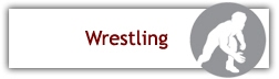 http://il.8to18.com/triadhs/activities/wrestling/b