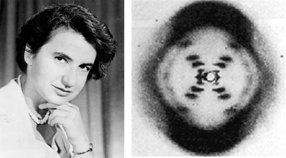 a biography of rosalind an american scientist 3 women scientists whose discoveries were credited to men rosalind franklin, an discover some of the lesser-known african-american women scientists who have.