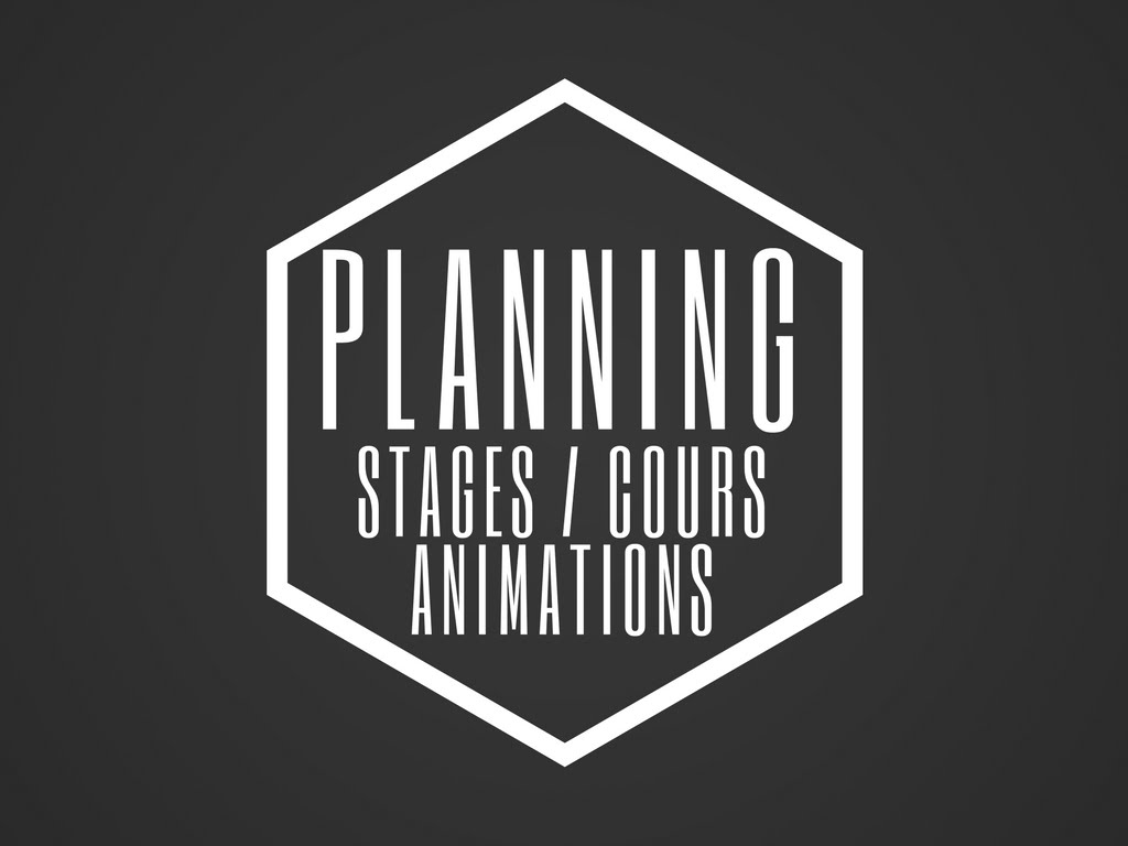 http://bit.ly/planninganimstm