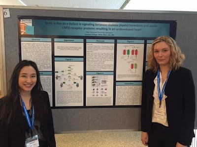 Partnership with Mayo Clinic for Undergraduate Research