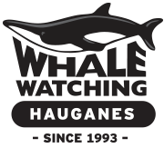 http://whales.is/