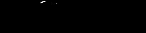 Par des actions concrètes et des activités festives, l'organisme a comme objectif de faciliter l'accès au vélo pour tous dans la ville de Québec.  L'atelier communautaire VéloCentrix existe pour offrir à tous les cyclistes les outils, le savoir, l'accès à un garage de mécanique-vélo et les conseils de mécanicien(s) bénévole(s).