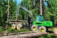 Харвестер: заготовка древесины