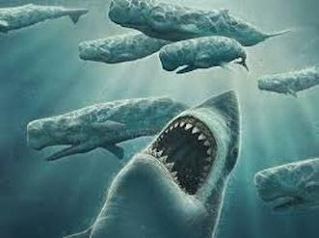 what was the megalodons diet