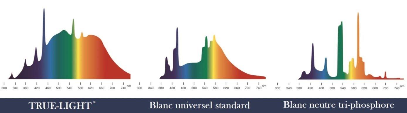 3 graphes de comparaison de spectres