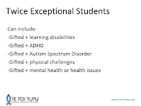 Twice Exceptional Kids Both Gifted And >> Twice Exceptional 2e Gifted And Talented Education At Waipipi School