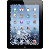 Report Missing/Damaged iPad