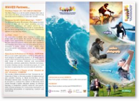 The WAVES Project flyer