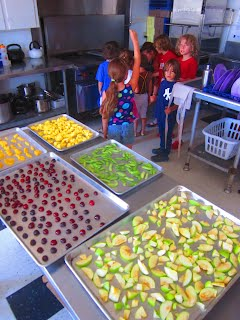 The Wellness Coalition hosts a dehydration project with the Guadalupe Montessori School