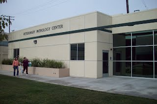 Veterinary Pathology Center