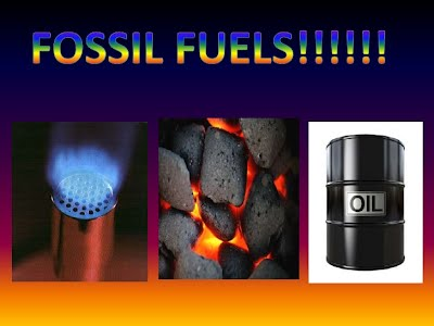 Fossil Fuels Sustainability Year 10