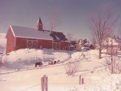 Barn Restoration - Whaleback Vineyard