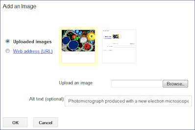 Screen capture of the Insert Image selection showing alternative text.
