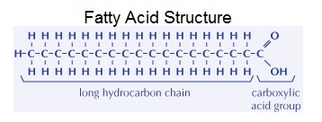 unlike other biomolecule groups fatty acid monomers are not directly bonded to each other to form long chains also not all lipid groups contain fatty