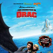 Com ensinistrar el teu drac