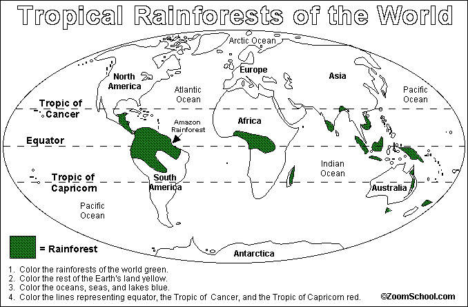 2.2.- Where are rainforest? - English projects