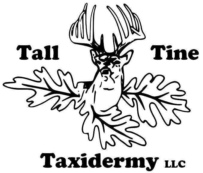 https://www.facebook.com/TallTineTaxidermyLLC/
