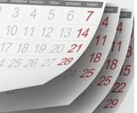 Planned activities for the whole year......