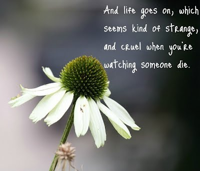 Death Of A Friend Sayings and Quotes   Quotes and Sayings