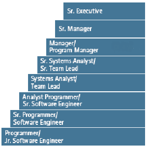 my career aspiration is joining the it industry and become a project leader in programmesystem development it is not only my dream but i am confident
