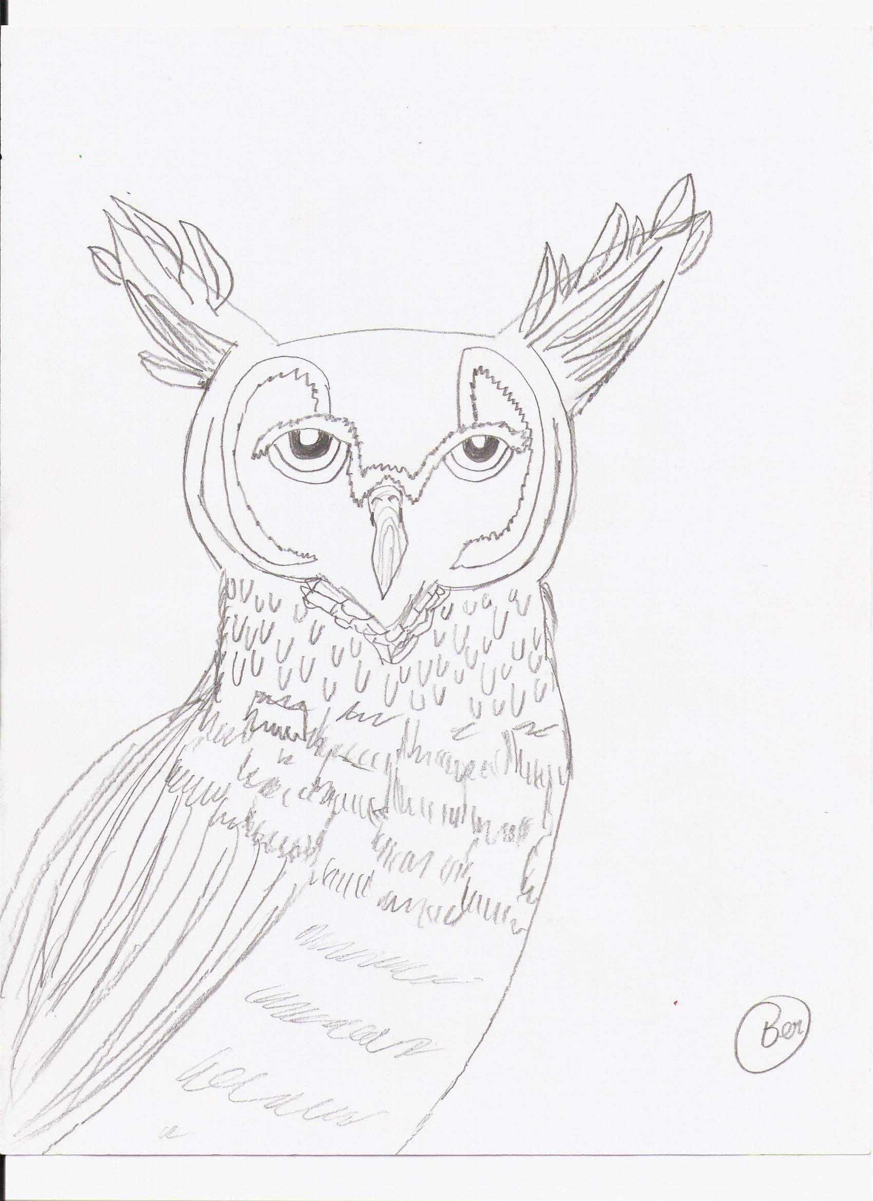 great horned owl outline coloring pages