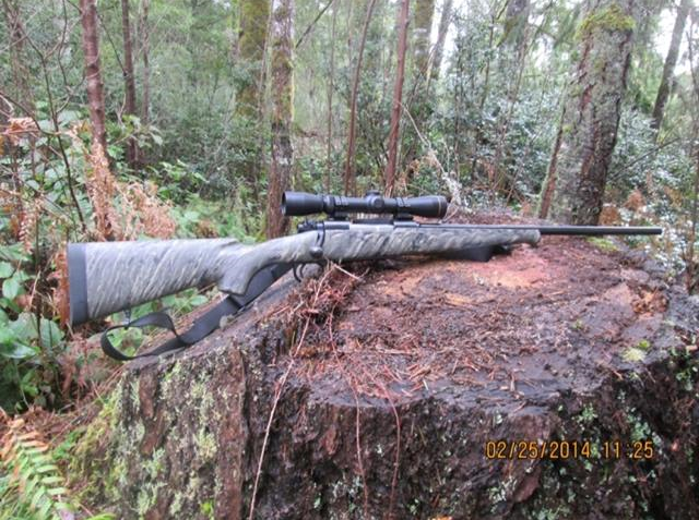 What - Rifle,Scope, Caliber, Bullet Are You Taking For Elk