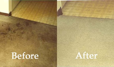 Oakwood Floor Stripping 99 Whole House Carpet Cleaning