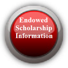 Restricted and Endowed Scholarships