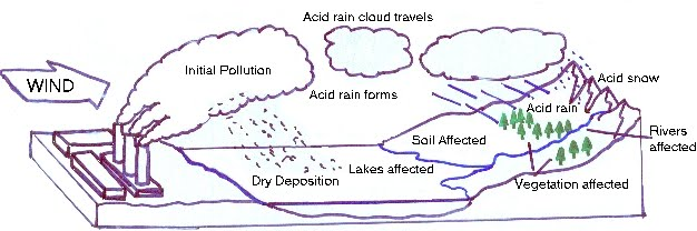 essay acid rain causes and effects