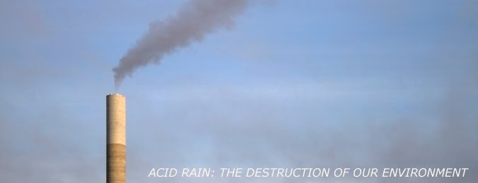 acid rain causes effects and solutions causes effects and solutions of acid rain