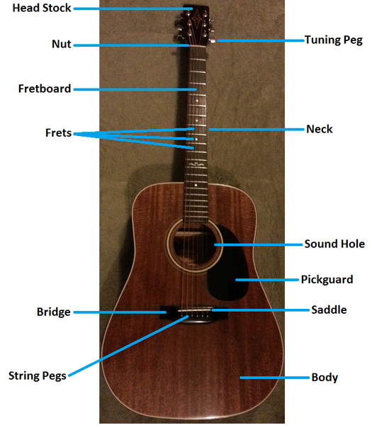 Activity 1 Acoustic Guitar Anatomy Acoustic Guitar For Beginners