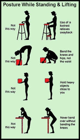 Exercises To Correct Bad Posture Active Care